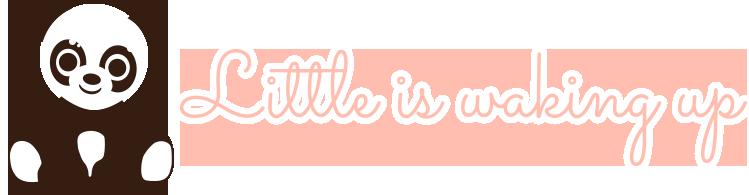 Logo - LittleIsWakingUp - Pikler